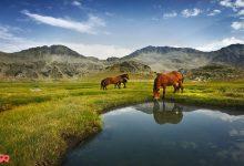 Photo of پارک ملی پیرین بلغارستان ( Pirin National Park )