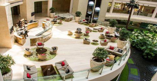 هتل رادیسون بلو هند دهلی نو