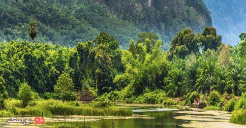 پارک کائو یای تایلند