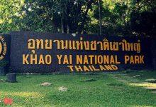 Photo of پارک ملی کائو یای