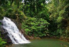 تصویر آبشار کوتا تینگی مالزی