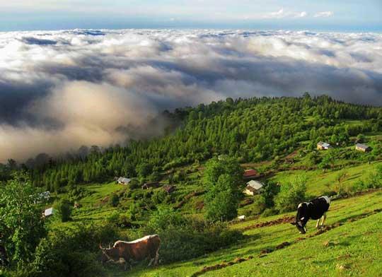 تصویر مازیچال بهشت مازندران